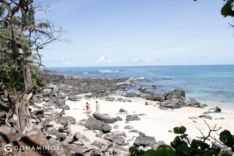 chunsreef_hawaii3